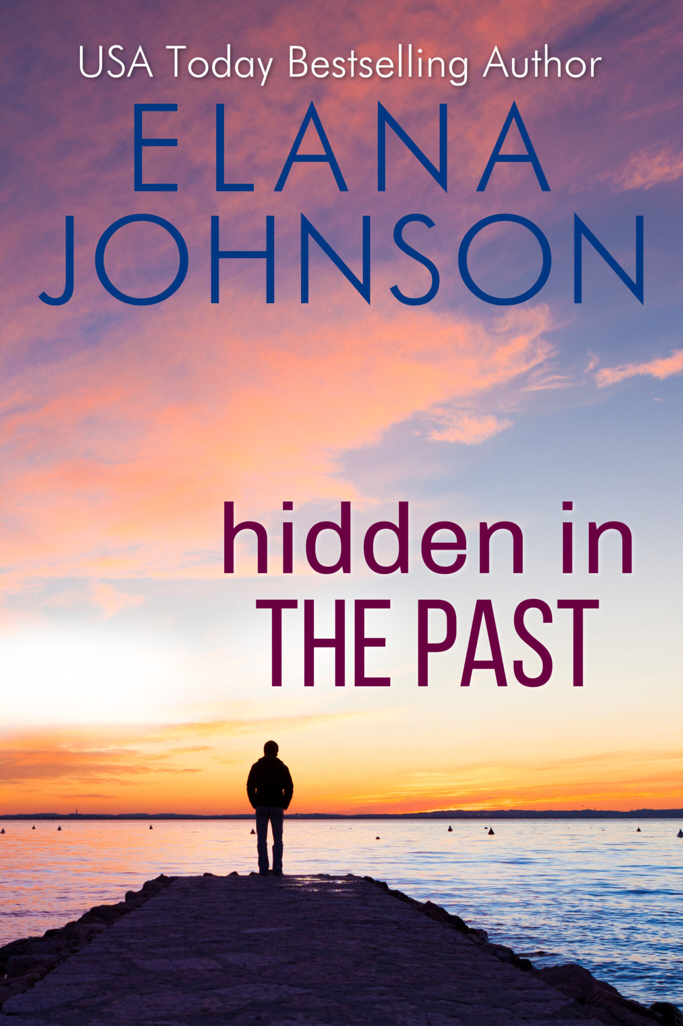 Hidden in the Past New Cover (1)